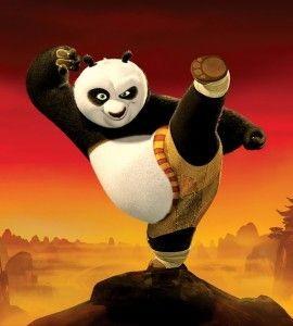 kung_fu_panda_costume